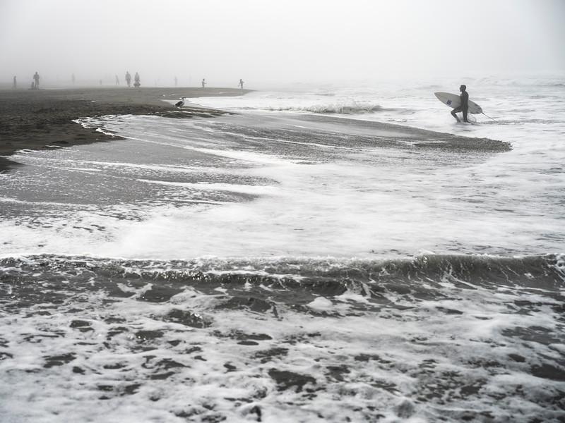 ocean beach quarantine 15203210-3-20.jpg