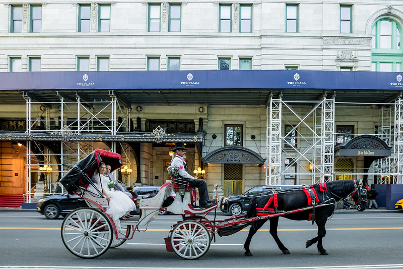 Central Park Wedding - Jessica & Reiniel-368.jpg
