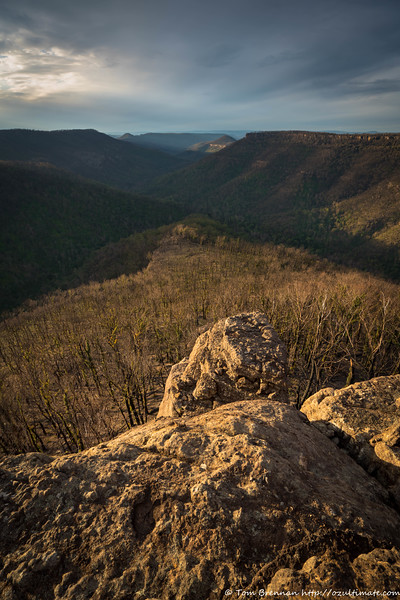 Looking down Danjera Creek gorge in the afternoon light