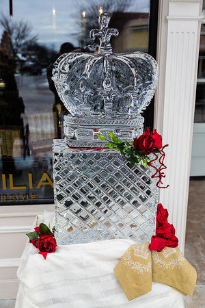 Plymouth Ice Sculptures 2015