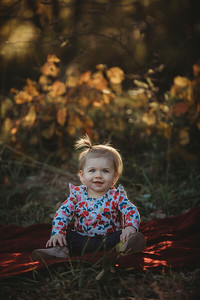 Darcy - One year Oct 2019