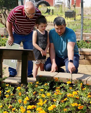 Peck Farm Park Butterfly House