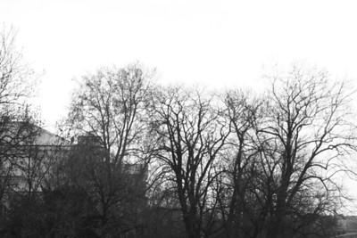 Prague - February 2009 (by Edwin)