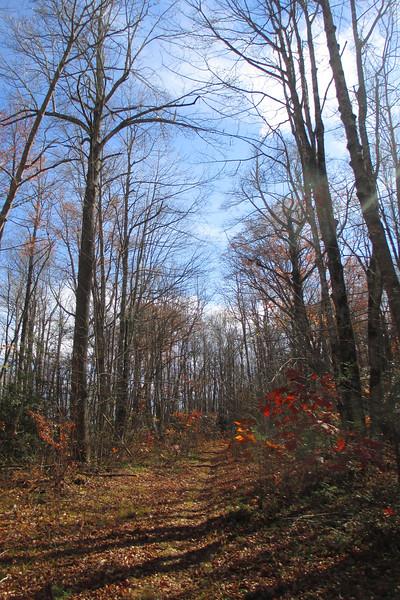 Mac's Gap Trail - 3,900'