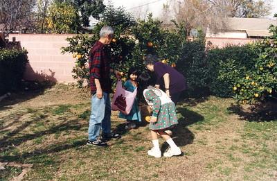 Matoi Photos 1993-96
