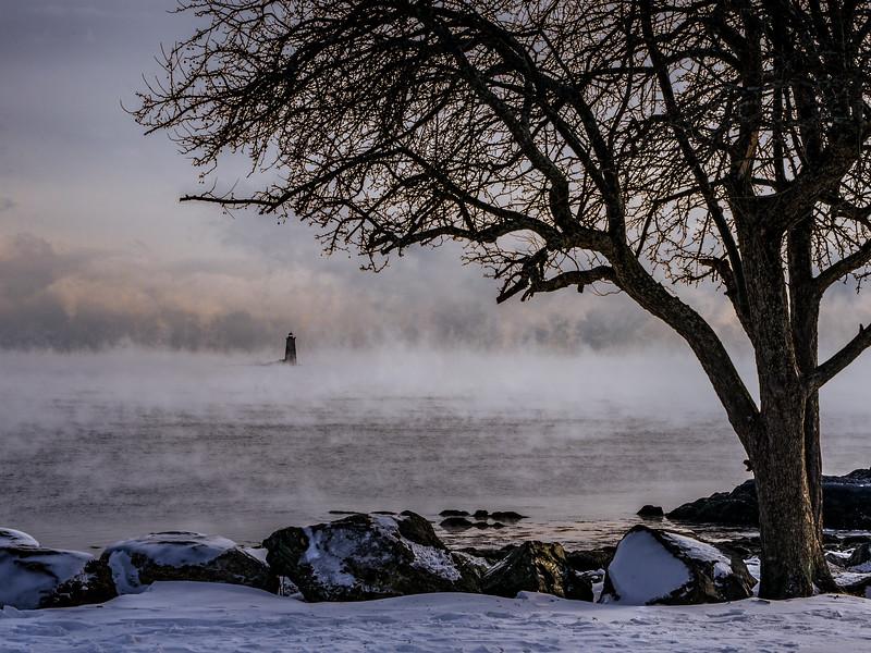 Whaleback Light, Sea Smoke & a Tree