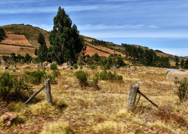 BOV_2132-7x5-Graves on road side.jpg