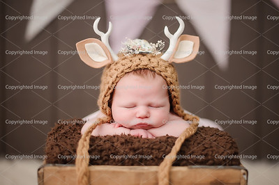 Hadley B. Newborn/Christmas