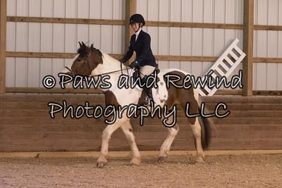 January 10, 2021 Van Dolah Winter Horse Show
