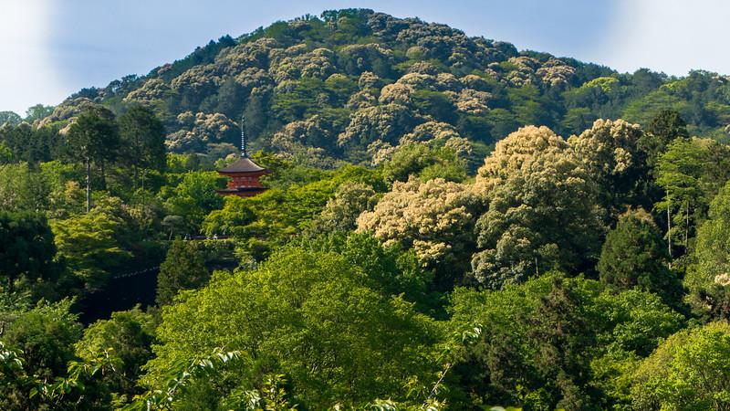 View from Kiyomizu-dera