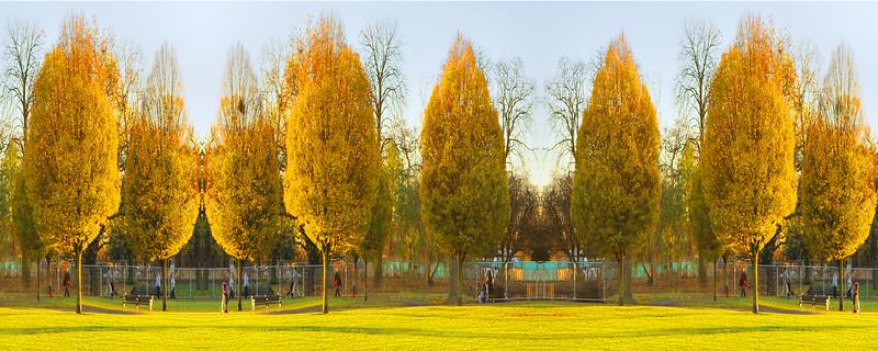 Clissold Park~5631-3mfw.