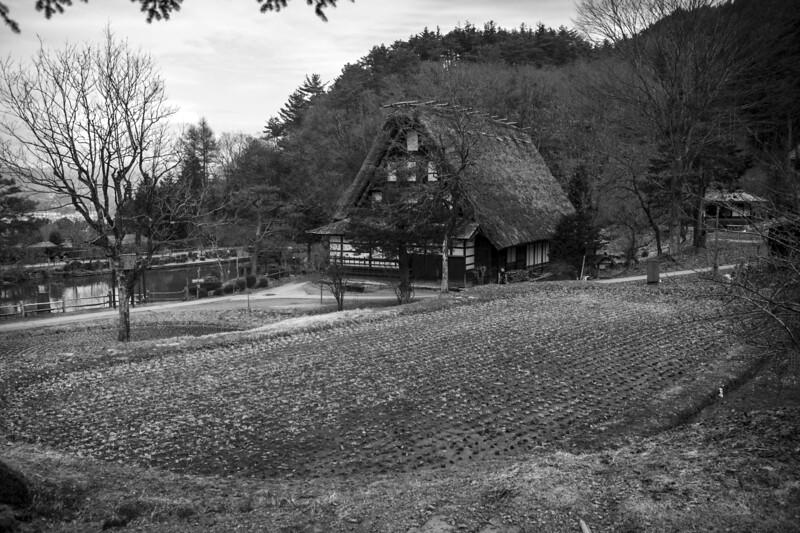 Takayama 280313 11 .jpg