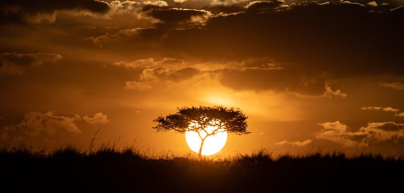 September - Masai Mara