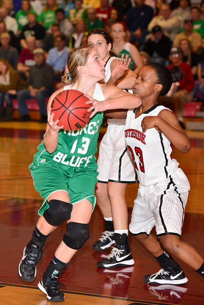 Hokes Bluff Lady Eagles v. Southside, January 19, 2013