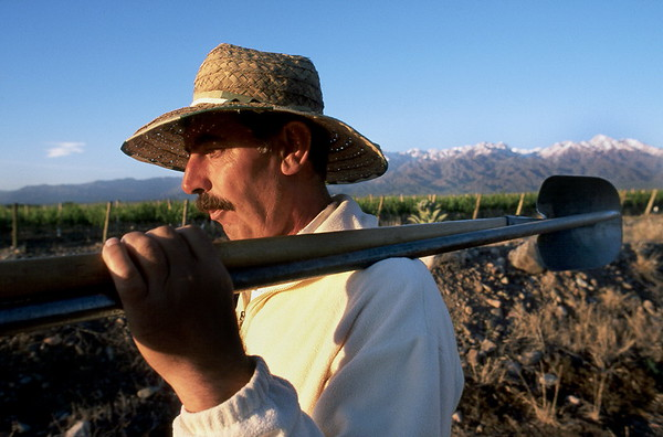 Libro fotográfico sobre Malbec argentino | Fotografía de vinos Caio Goldin Fotógrafo
