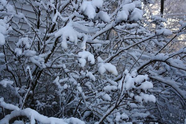 First snow - 12/09