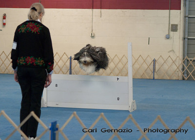 Saturday, Obedience Candid Photos