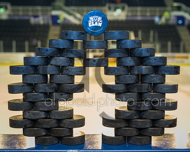 Braehead Clan v Nottingham Panthers 6/12/13