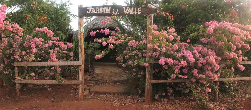 Valle de Ingenios - 30.jpg