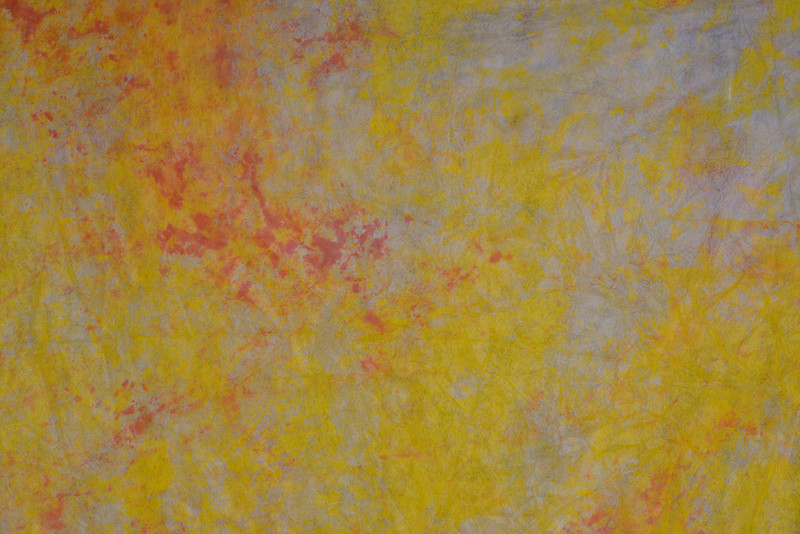 Yellow variegate 10x24 7606 - $35