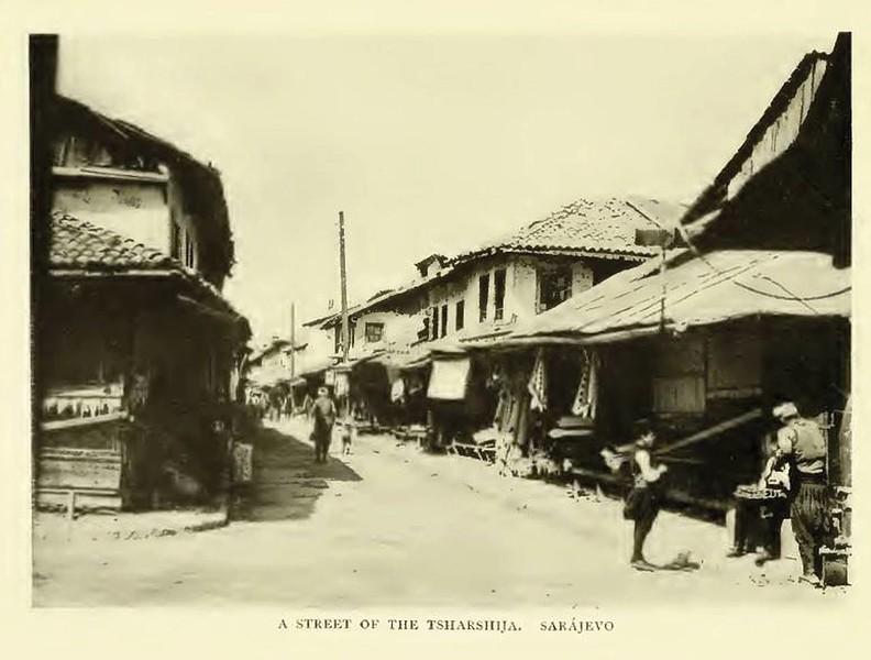 Saraci-1876g.jpg