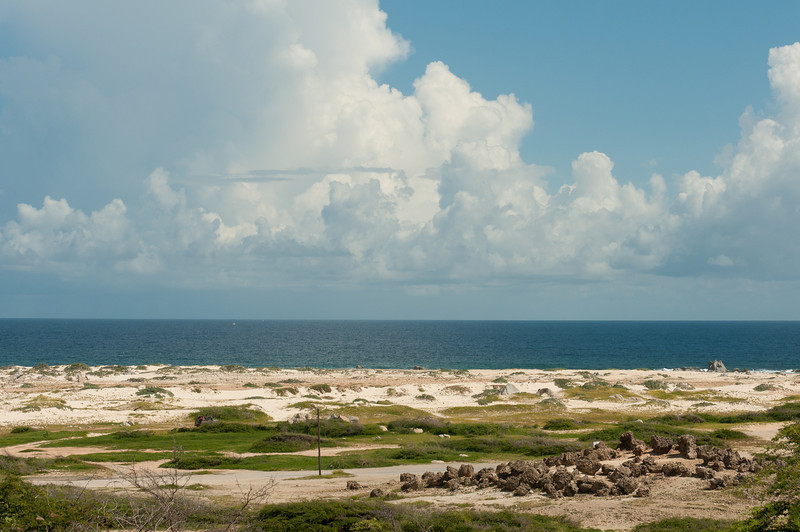 Seascape in the island of Aruba