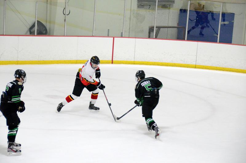 140111 Flames Hockey-175.JPG