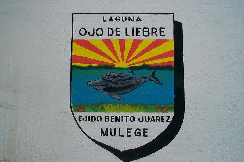 Laguna Ojo de Liebre seal
