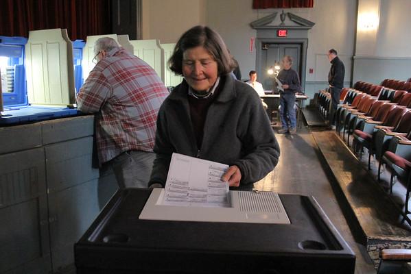 Woodstock Voting, 2014