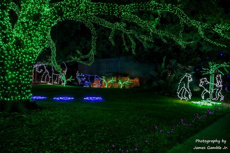 Houston-Zoo-Lights-2910.jpg