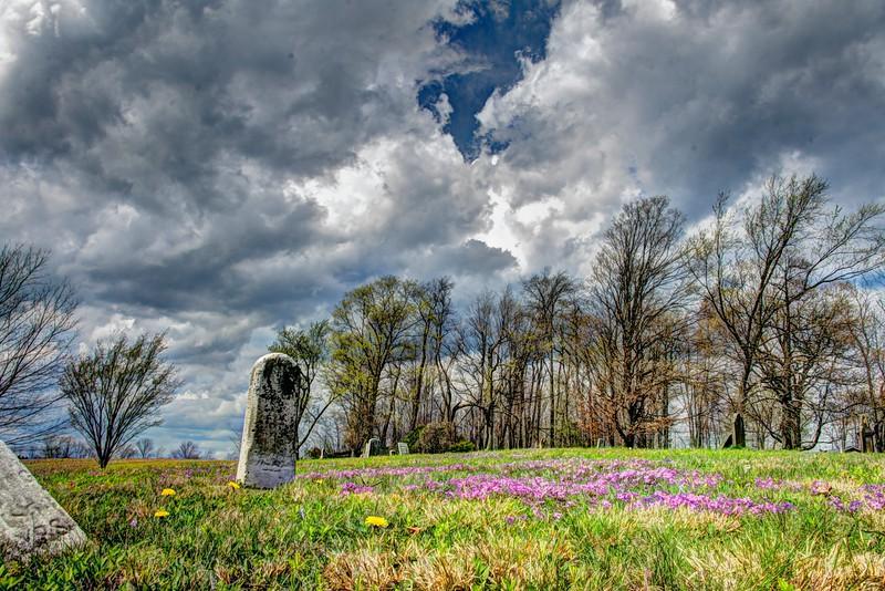 Forgetmenots-cemetery-hartville3.jpg