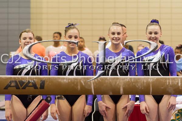 3-19-2016 Level 9 Girls State Meet (Apex Gymnastics)