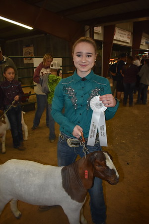 Hunt County Fair 2018: Market Goats