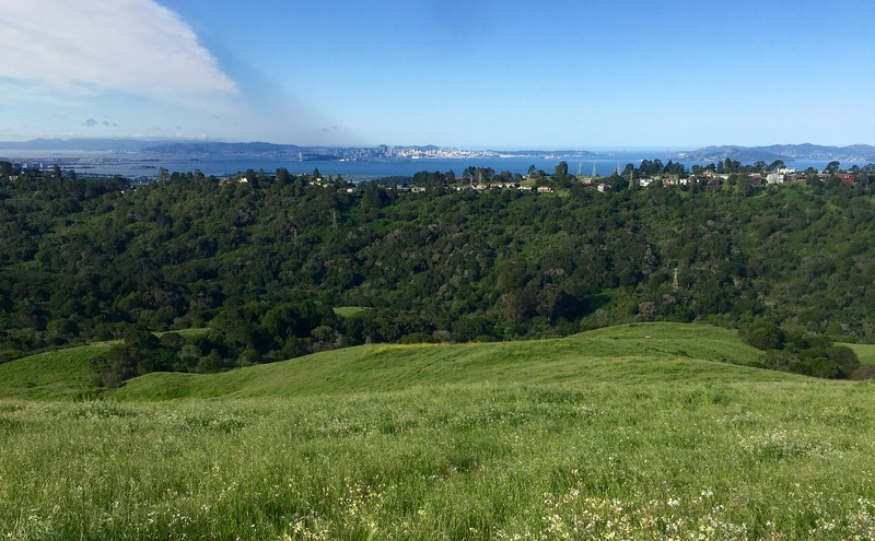 San Francisco from far away