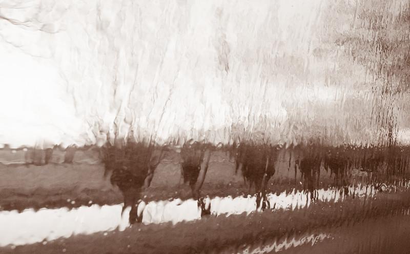 Rain 197