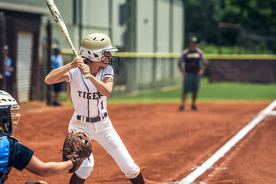 Dawson County Lady Tigers Softball {Varsity}