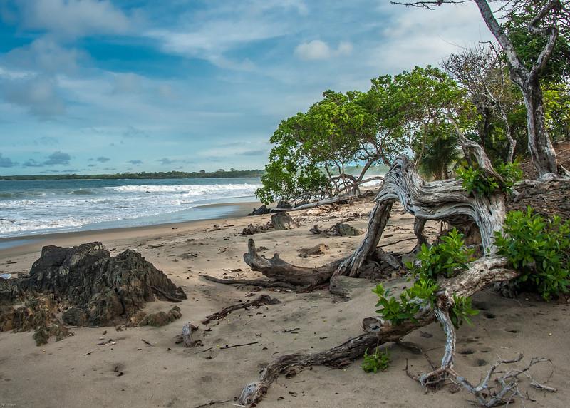 Costa Pedasi - Panama