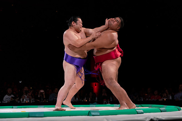 Sumo and Sushiii