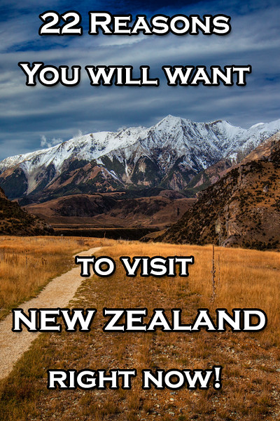 reasons-to-visit-new-zealand.jpg