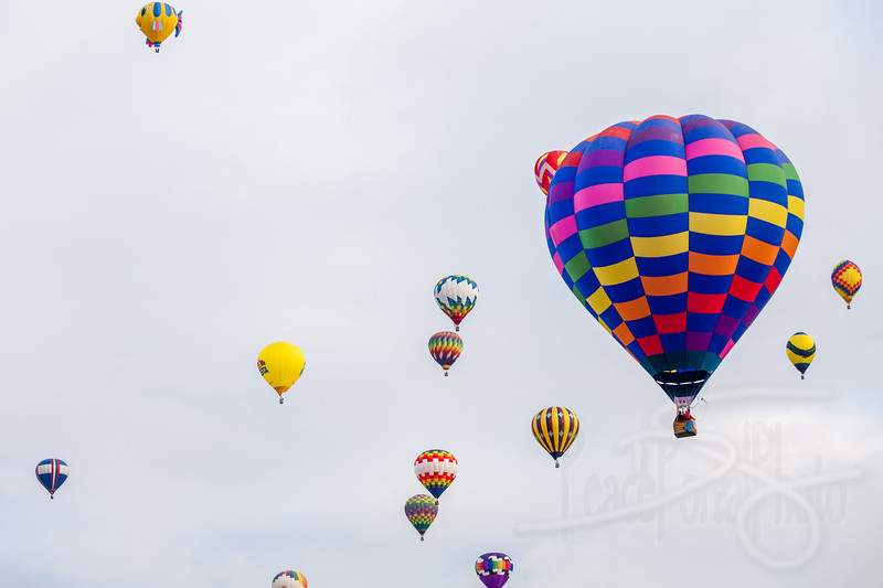 2014 Albuquerque International Balloon Fiesta (Festival)