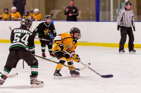 Game 27 - Berkshire Bruins vs. White Plains