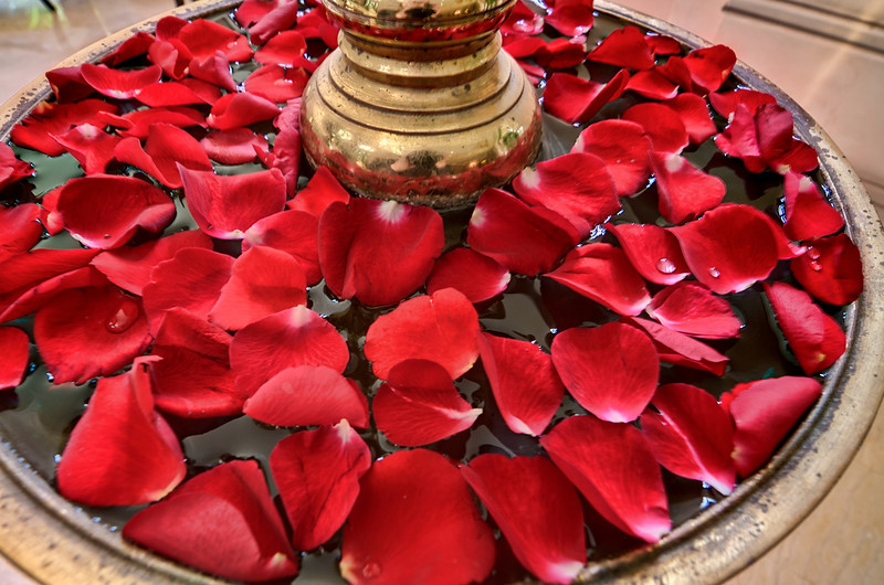 Flower Petals, Leela Palace Hotel-Bangalore India