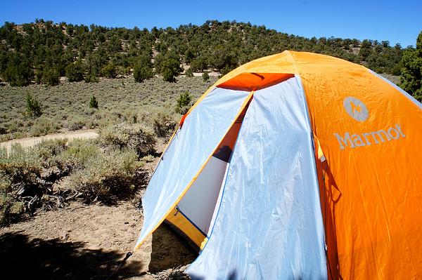 Grandview Campground/Ancient Bristlecone Pine Forest - 6/28/14