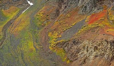 Colorado - Fall Colors
