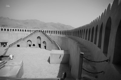 Shadows from Nizwa & Aljabel Alakder