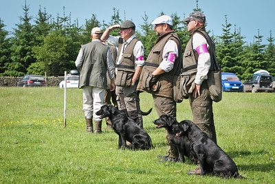 The Kennel Club Chatsworth 2016 International 4 Dog Team Working Test For Retrievers