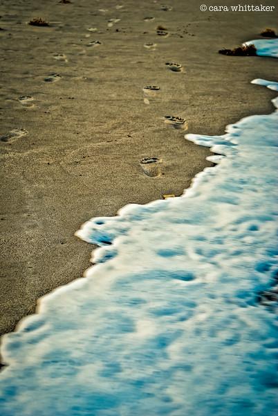 Footprints 3.jpg