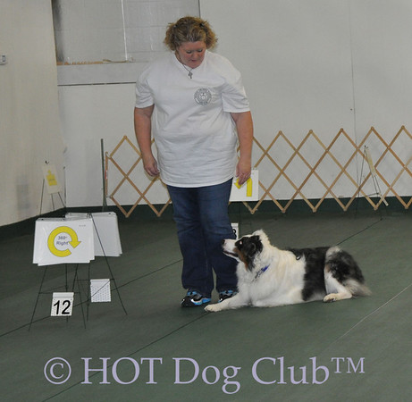 2012 July Rally & Obedience SNG