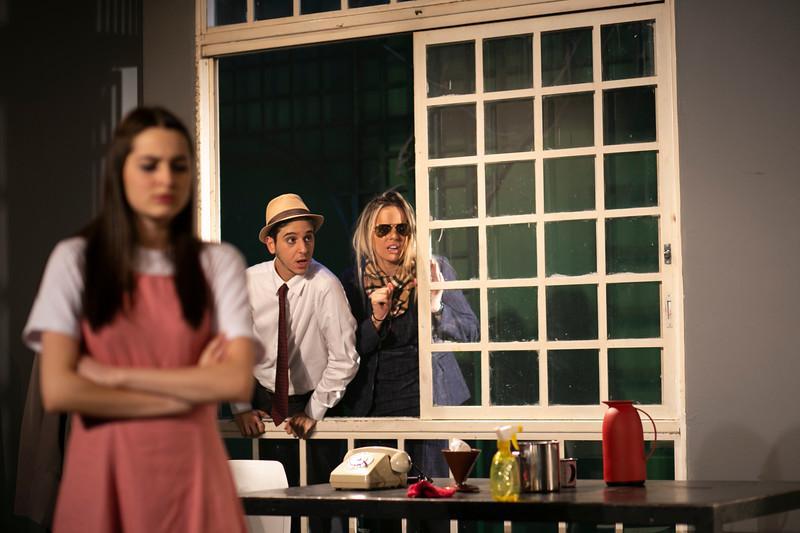 Allan Bravos - Celia Helena - O Beijo no Asfalto-225.jpg