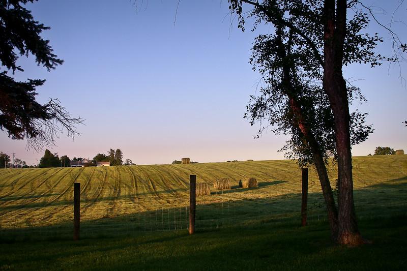 09May_farm_007.jpg